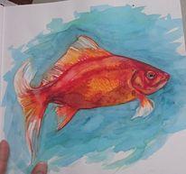 Goldfisch, Wasser, Tiere, Fisch