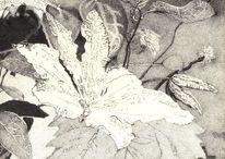 Schwarz weiß, Blätter, Blüte, Tusche
