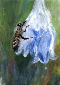 Honig, Biene, Sssssssssssssss, Blüte