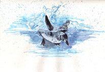 Natur, Platsch, Lebewesen, Pinguin