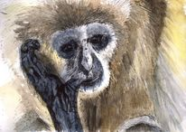 Gibbon, Fell, Tiere, Affe