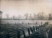 Zaun, Weide, Bauernhof, Koppel