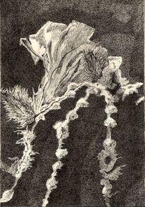 Blüte, Schwarz weiß, Zeichnung, Kaktus