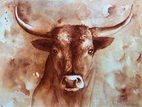 Stier, Rind rinder, Aquarellmalerei, Stierportrait