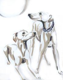 Tiere, Galgo, Hund, Ölmalerei