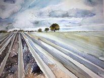 Holland, Aquarellmalerei, Landschaft, Feld