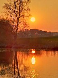 Baum, Sonnenuntergang, See, Fotografie