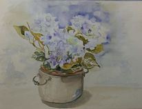 Blau, Hortensien, Topfblume, Aquarell