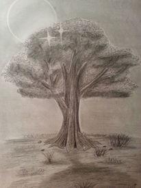 Landschaft, Bleistiftzeichnung, Baum, Zeichnungen