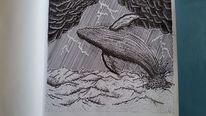 Wasser, Sturm, Zeichnung, Wal