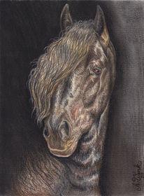 Friese, Pferde, Pastellmalerei, Barock