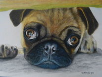Zeichnung, Luminance, Tierportrait, Hundeportrait