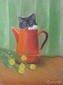 Katze, Katzenzeichnung, Pastellmalerei, Katzenpastell