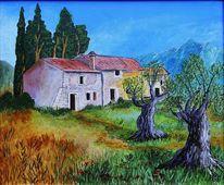 Bauernhaus, Toskana, Olivenbäume, Wiese