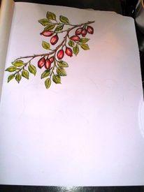 Hagebuttenzweig, Zeichenübung, Buntstiftzeichnung, Skizzenbuch zeichnen