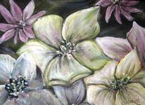 Dunkel, Blumen, Kalt, Pflanzen