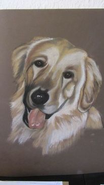Zeichnungen, Hundeportrait