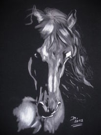 Pferde, Malerei, Schattenspiel