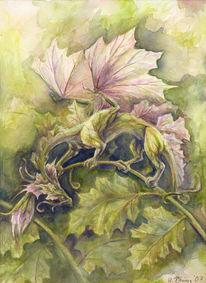 Hannah boeving, Pflanzen, Dragon salad, Blätter