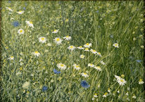 Leinen, Ölmalerei, Wiese, Blumen
