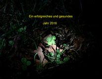 Kleeblatt, Neues jahr, Fotografie, Jahr