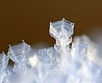 Kristall, Winter, Kelch, Eis