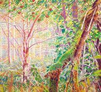 Wald, Regenbogenfarben, Eberesche, Baum