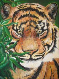 Acrylmalerei, Tiger, Malerei