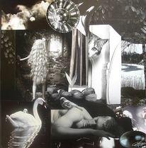Traum, Surreal, Schwan, Wasser