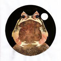 Frosch, Zipfelfrosch, Mond, Illustration