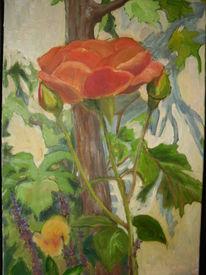 Weinstock, Rose, Blätter, Grün