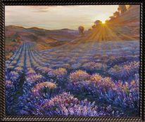 Lavendel, Feld, Sonne, Baum