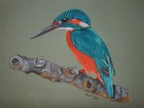 Pastellmalerei, Tiermalerei, Eisvogel, Tiere