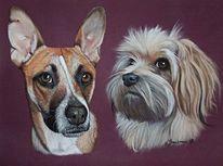Pastellmalerei, Hund, Tiere, Realismus
