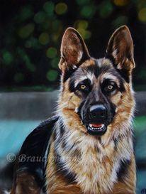 Hund, Hundekopf, Pastellmalerei, Haustier