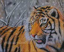 Tiermalerei, Winter, Schnee, Großkatze