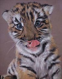 Pastellmalerei, Fell zeichnen, Raubtier, Tierwelt