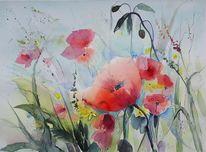 Blüte, Blumenwiese, Mohn, Aquarell