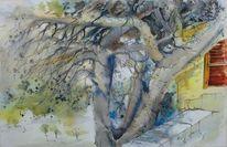 Baum, Kreta, Pinienbaum, Landschaft