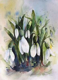 Blumen, Weiße blüten, Schneeglöckchen, Aquarell