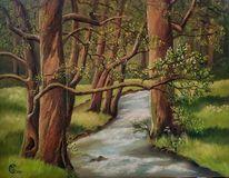 Bach, Baum, Wald, Natur