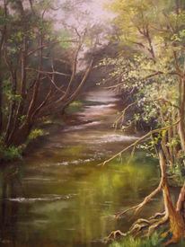 Baum, Spiegelung, Gewässer, Landschaft