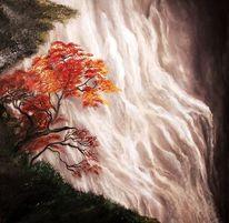 Wasserfall, Ahorn, Natur, Baum