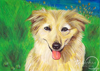 Malerei, Blumen, Braun, Hund