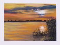 Schilf, Licht, See, Sonnenuntergang