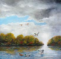 Ente, Herbstlaub, Wolken, Wasser