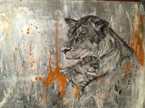 Jung, Löwe, Wildtiere, Afrika