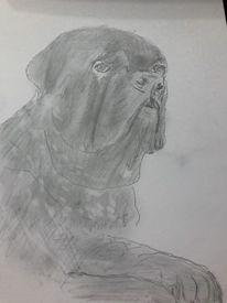 Portrait, Kreide, Hund, Buntstiftzeichnung