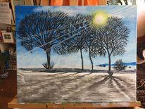 Schnee, Sonne, Busch, Feld