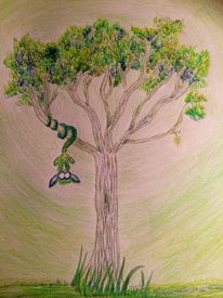 Baum, Fell, Klettern, Flora